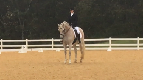 keep stables holly linz about dressage training boarding