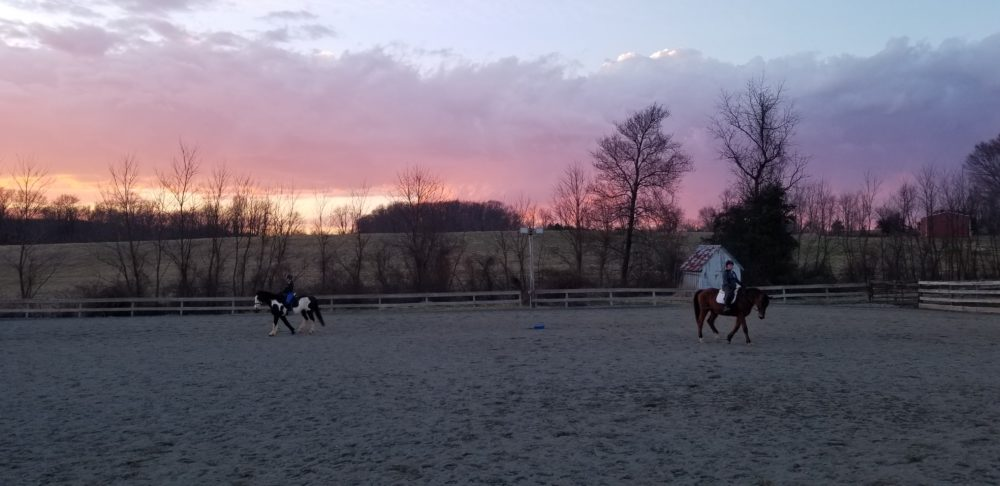 clinics training trainer dressage holly linz at keep stables