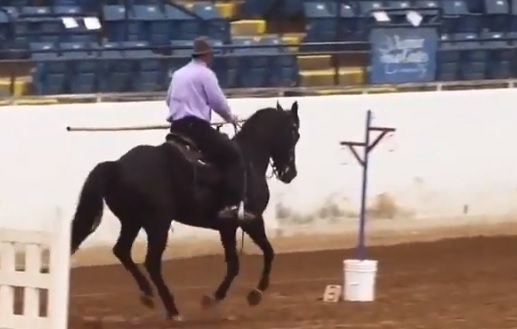 lance obstacle 2 speed trial working equitation cantering
