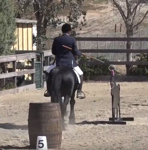 lance obstacle with the bull dressage rider working equitation